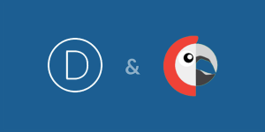 Divi y Polylang WordPress