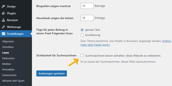 Website wird nicht in Google angezeigt